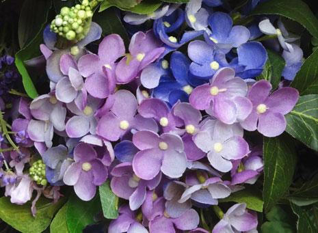 Plantas y flores artificiales, parecen de verdad