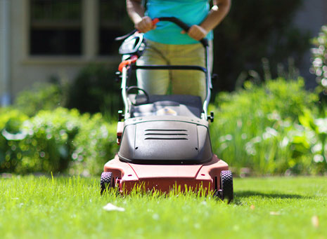 Maquinaria y herramientas, pon a punto tu jardín