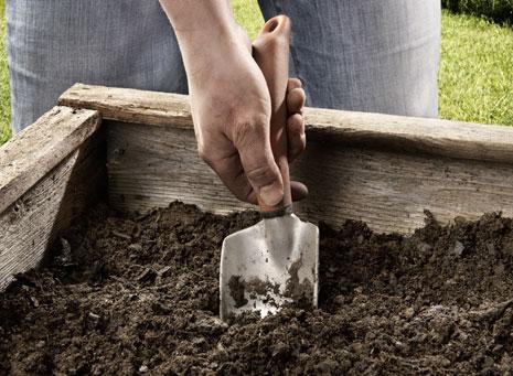 Tierras, la base para tus plantas y huerto