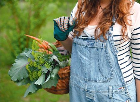 Frutales y huerto, de la tierra al plato