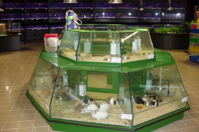 Jardiland for Jardiland aquarium