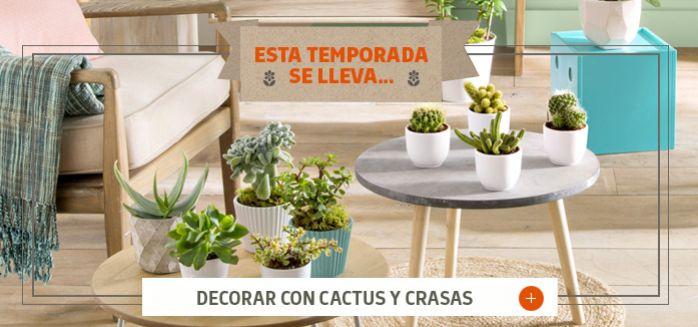 Decorar con cactus y crasas