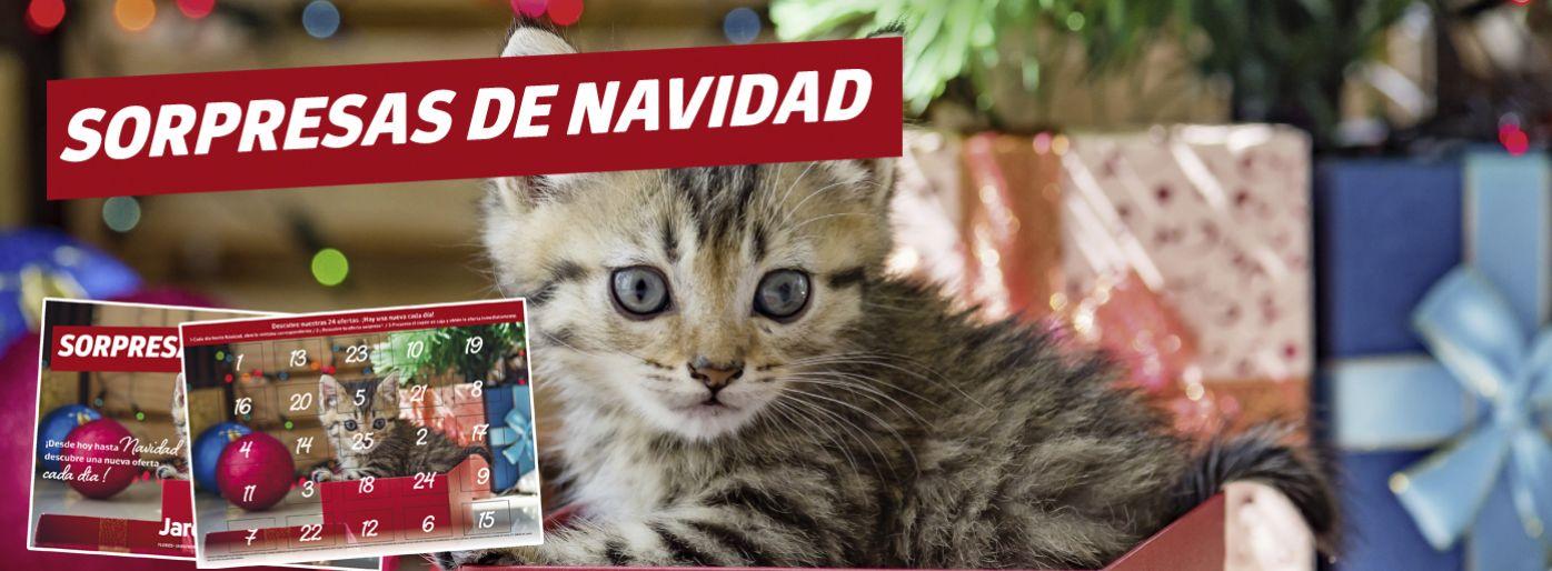 CALENDARIO DE ADVIENTO -SORPRESAS NAVIDAD