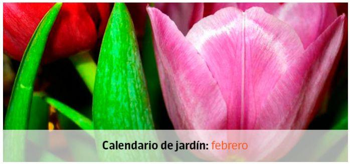 Tu jardín en febrero