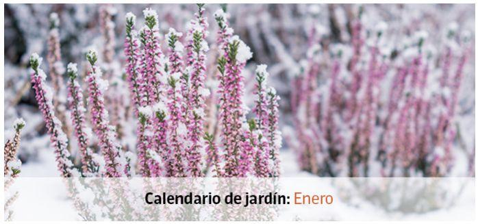 calendario jardin enero