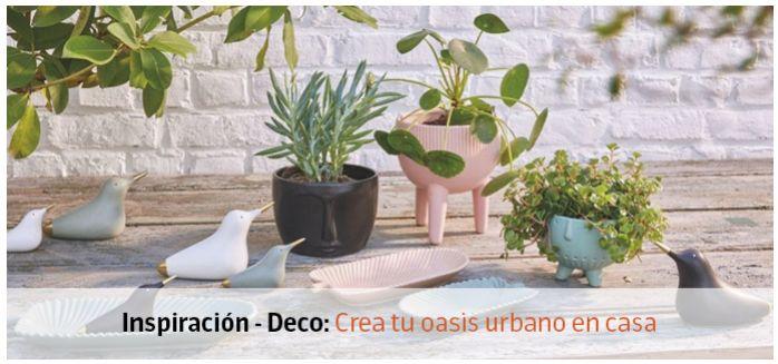 oasis urbano